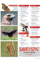 Bird Watching Preview - Page 3