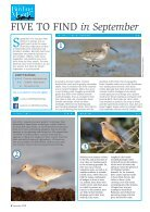 Bird Watching Preview - Page 6