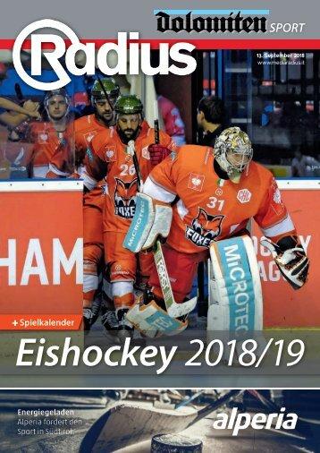Radius Eishockey 2018