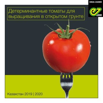 Brochure Kazakhstan Tomato OF 2018
