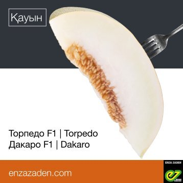 Leaflet Kazakhstan Torpedo 2018