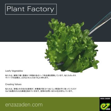 Leaflet Vertical Farming 2018 Japanese version