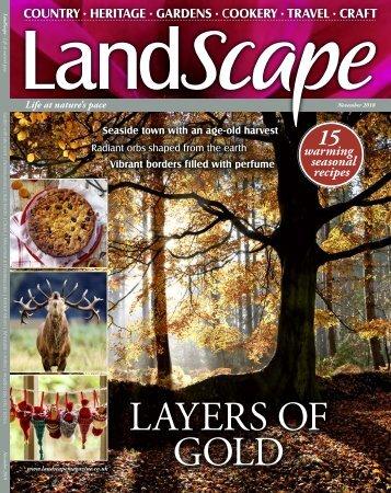 Landscape Nov
