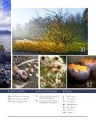 Landscape Nov  - Page 4
