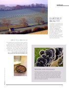 Landscape Nov  - Page 6
