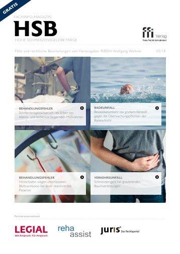 Fachinfo-Magazin HSB - Ausgabe 3/18