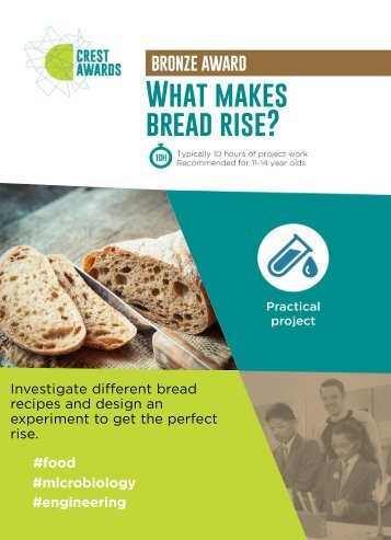 What makes bread rise
