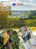 Lust auf Italien - Selection Wine - Page 2