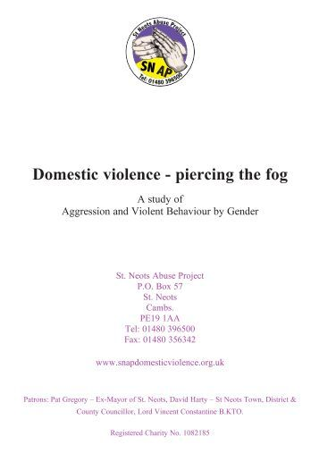 Literature review domestic violence