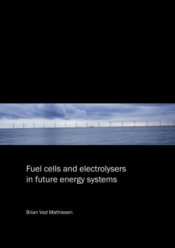 Fuel cells and electrolysers in future energy systems - VBN
