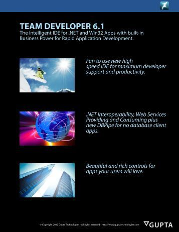 Team Developer 6.1 Datasheet - Gupta Technologies