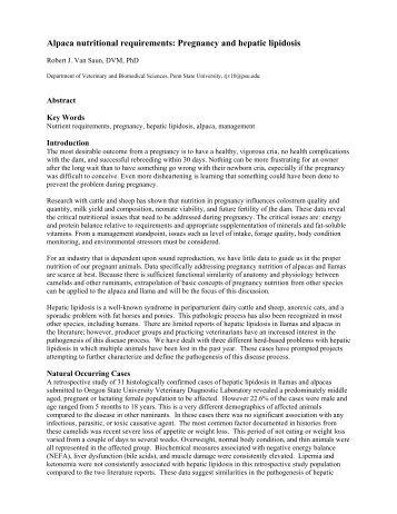 Hepatic Lipidosis in Camelids - Veterinary and Biomedical Sciences