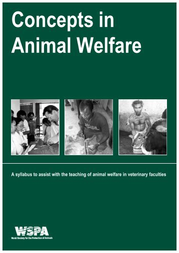 animal welfare guidelines for sheep