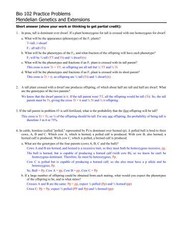 mendelian genetics problems with answers pdf