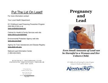 Other: Kentucky Cabinet For Health And Family Services CHFS,Kentucky Cabinet  For Health And Family Services Overview,