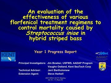 evaluation of the effectiveness of control