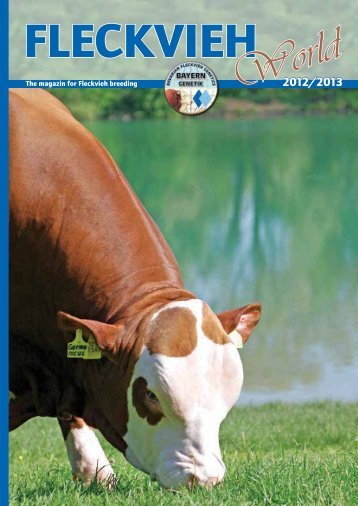 The magazin for Fleckvieh breeding