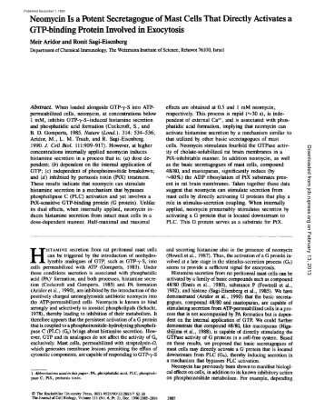 Neomycin Is a Potent Secretagogue of Mast Cells - The Journal of ...