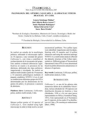 Palinología del género Callicarpa L. (Lamiaceae: Viticoideaceae)