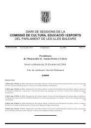 28 d'octubre de 2004núm. 17 VI - Parlament de les Illes Balears