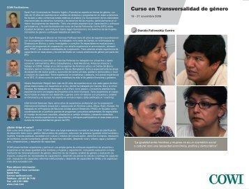 Curso en Transversalidad de género - COWI