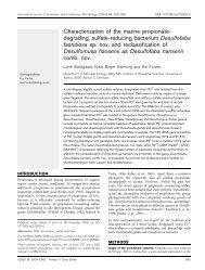 Characterization of the marine propionate- degrading, sulfate ...