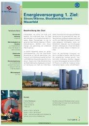 1. Ziel : Strom/Wärme, Blockheizkraftwerk Mauerfeld