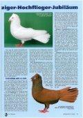 09 - SV der Danziger Hochflieger - Page 2