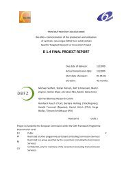 Final project report draft