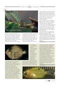 YAPAY B‹YOLOJ‹ - Page 6