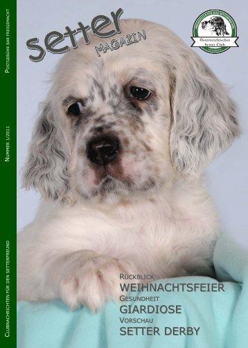 Fabulous Guy In Love with Dorea - Österreichischer Setter Club