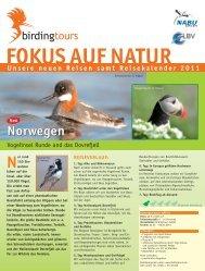 FOKUS AUF NATUR - Birdingtours