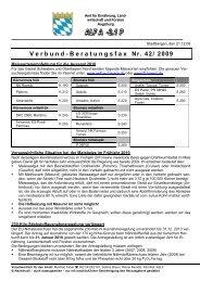 Verbund-Beratungsfax Nr. 42/ 2009 - Amt für Ernährung ...