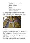 K  O N  Z  E P T I O N - Landkreis Regensburg - Page 7