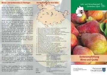 Sortenempfehlung pflaume aprikose und pfirsich for Psychologie nc liste