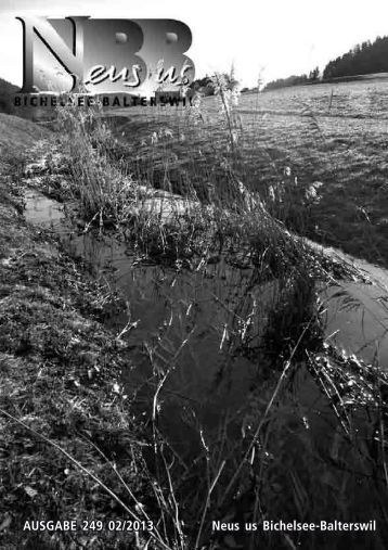 NBB 2013 - Gemeinde Bichelsee-Balterswil