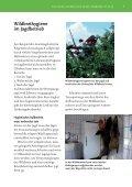 Wildbrethygiene - Ministerium für Ländlichen Raum und ... - Seite 7