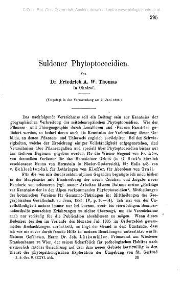 Suldener Phytoptoeeeidien.