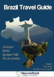Download Guide - Discover Brazil