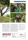 auf die Bäume, fertig, los! - Zweigstelle Baumpflege - Seite 2