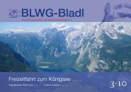 BLWG-Bladl, Ausgabe 3 /2010