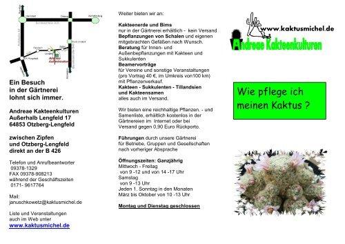 Wie Pflege Ich Hortensien : wie pflege ich meinen kaktus andreae kakteenkulturen ~ A.2002-acura-tl-radio.info Haus und Dekorationen