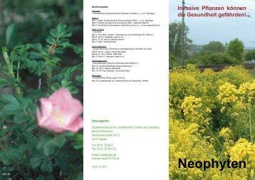 Neophyten - Invasive Pflanzen können die Gesundheit gefährden