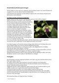 Anleitung für Dendrobium (pdf) - OrchIDEA - Seite 2