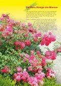 13177 Ratgeber Rosenpflege - Neudorff - Seite 2