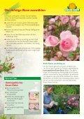 13177 Ratgeber Rosenpflege - Neudorff - Seite 3