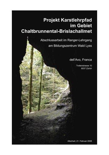Projekt Karstlehrpfad Im Gebiet Chaltbrunnental ... - SGH-Basel