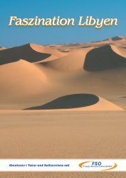 Sahara Intensiv - bei FSO