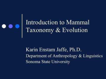 Introduction to Mammal Taxonomy & Evolution