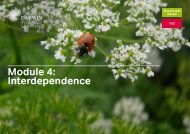 Module 4: Interdependence - National STEM Centre
